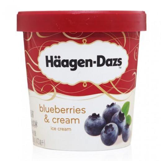 Haagen Dazs Blueberries Ice Cream 100 ml