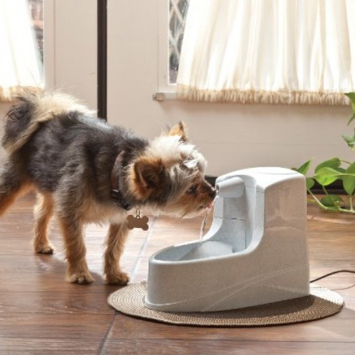 Petsafe Mini Fountain Uk Rohs