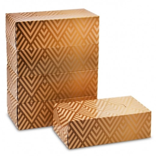 Taw9eel Golden Pattern Facial Tissues 200 x 2 Ply (5 Boxes)