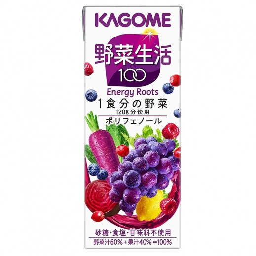 Kagome Energy Roots Juice 200 ml