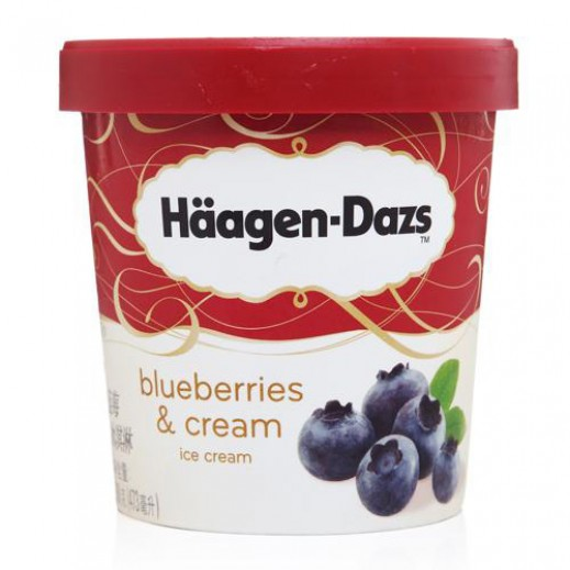 Haagen Dazs Blueberries Ice Cream 100 ml
