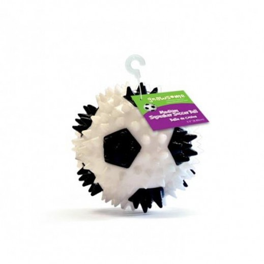 Royal Pet Squeaker Soccer Ball