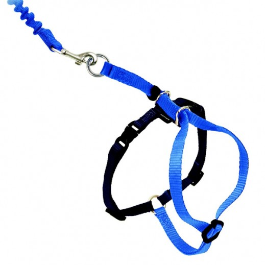 Petsafe Easy Walk Cat Harness & Lead (Assorted)