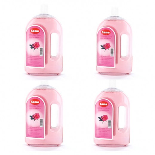 Value Pack - Sana Disinfectant Rose 750 ml (4 Pieces)