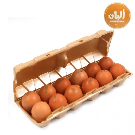 Alban Fresh Kuwaiti Free Range Brown Eggs 12 Pcs