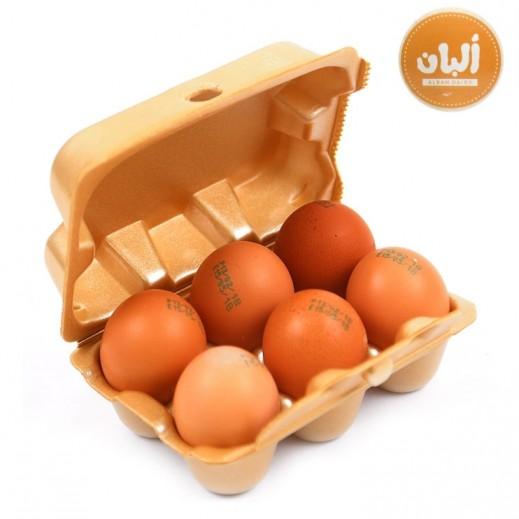 Alban Fresh Kuwaiti Free Range Brown Eggs 6 Pcs