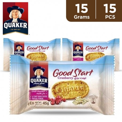 Quaker Good Start Cranberry Biscuit 15 x 15 g