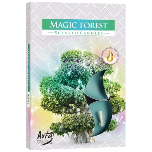 Aura Scented Candle Magic Forest 66 g - 6 Pieces