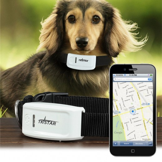 TKStar GPS Pet Tracker