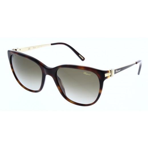 Chopard Shiny Dark Havana Women's Sunglasses - 56 mm - delivered by Waleed Optics