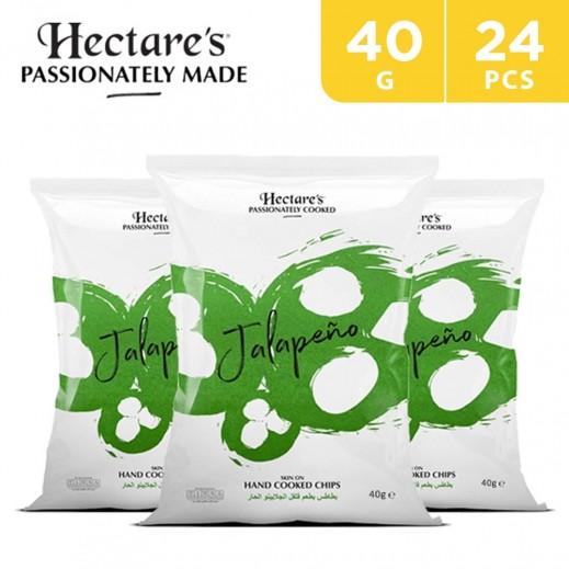 Hectare's Potato Chips Jalapeno 24 x 40 g