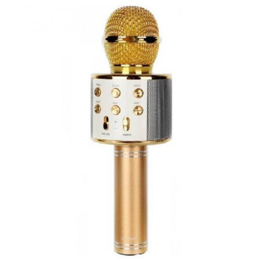 NHE 30 W Mic Speaker - Gold