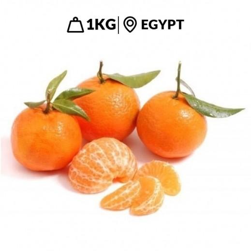 Fresh Egyptian Mandarin (1 kg Approx)