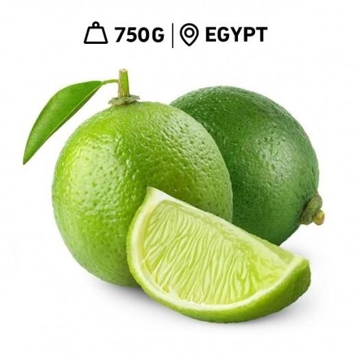 Fresh Egyptian Lime Bag (750 g Approx.)
