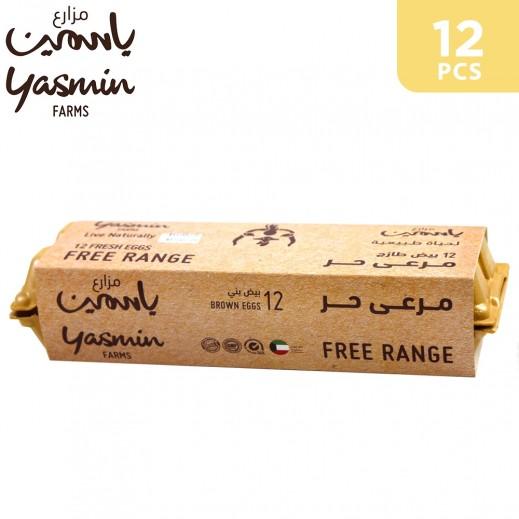 Yasmin Farms Free Range Natural Feed Brown Eggs ( 12 pcs)