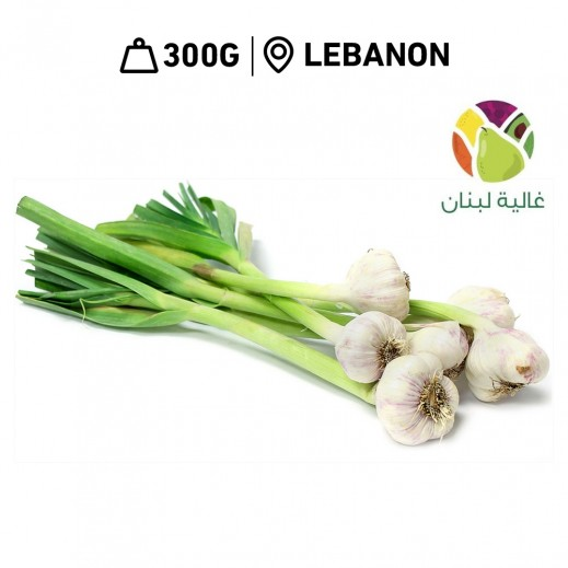 Ghalyat Lobnan Fresh Lebanese Green Garlic (300 g Approx.)