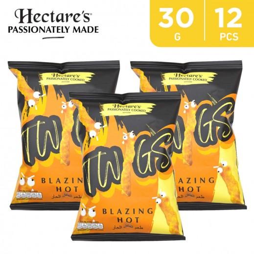 Hectare's Gluten Free Family Fun Box Twigs Blazing Hot Flavored Corn Snacks 12 x 30 g