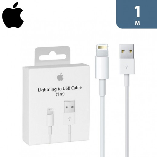 Apple Lightning to USB Cable 1 m - White