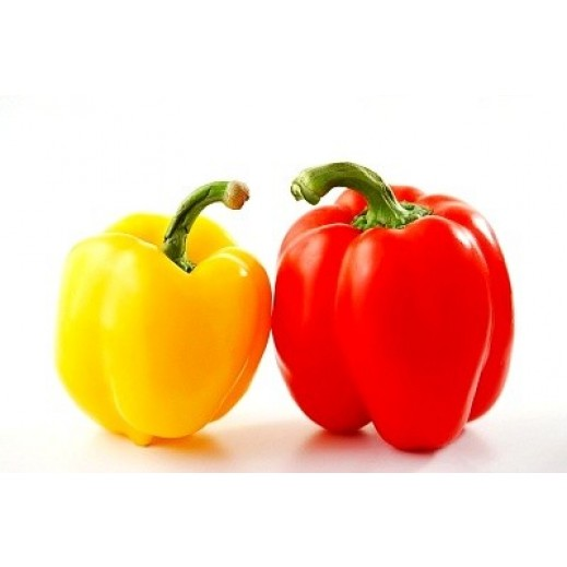 Fresh Capsicum Mix Pack 600 g