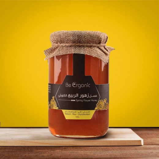 Be Organic Natural Raw Unpasteurized Spring Flowers Honey 500 g