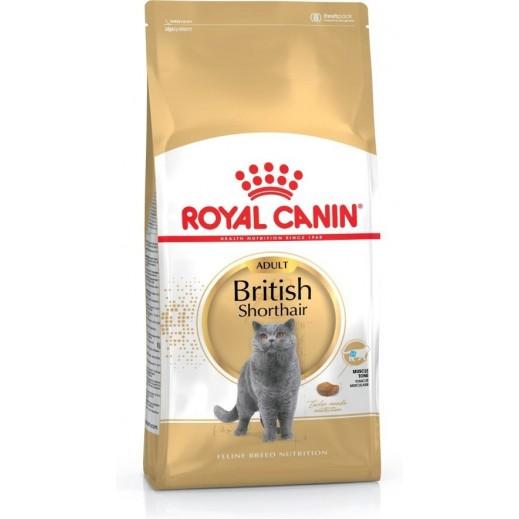 رويال كانين - فيلين طعام القطط االبريطانية البالغة شورثير 2 كجم