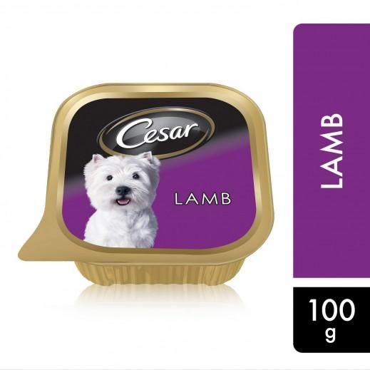 سيزار – طعام الكلاب البالغة مع لحم الغنم 100 جم