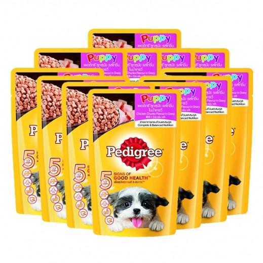 بيدجري – طعام الكلاب الصغيرة بنكهة الدجاج 12×130 جم