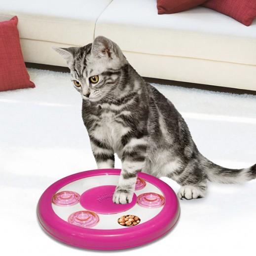 باوايز – لعبة لغز الطعام للقطط (ألوان متعددة)