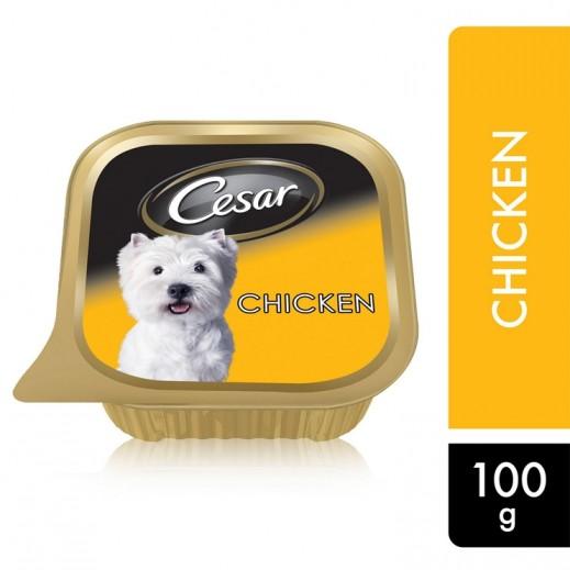 سيزار – طعام الكلاب البالغة مع الدجاج 100 جم