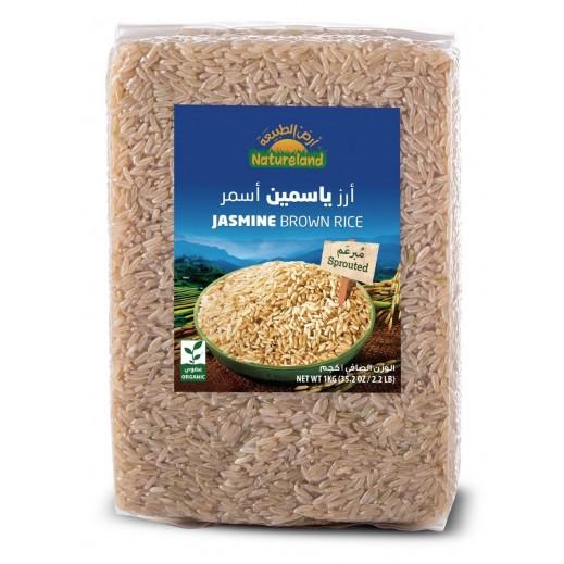 أرض الطبيعة – أرز ياسمين اسمر عضوي 1 كجم