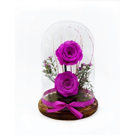 زهور فوشيا طويلة الأمد  - يتم التوصيل بواسطة Covent Palace