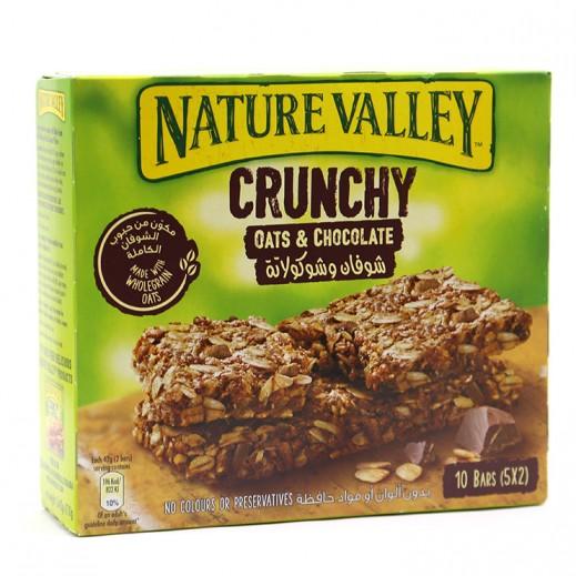 نايتشر فالي – ألواح حبوب الشوفان المقرمش والشوكولاتة 252 جم