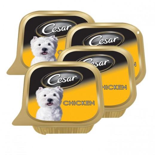 سيزار – طعام الكلاب البالغة مع الدجاج 6×100 جم