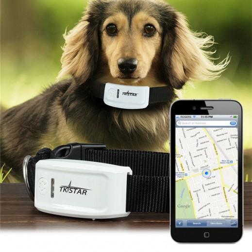 تي كي ستار – جهاز ذكي لتعقب الحيوانات الأليفة باستخدام تقنية GPS