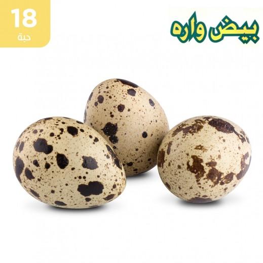 وارة بيض فري (السمان) طازج 18 حبة
