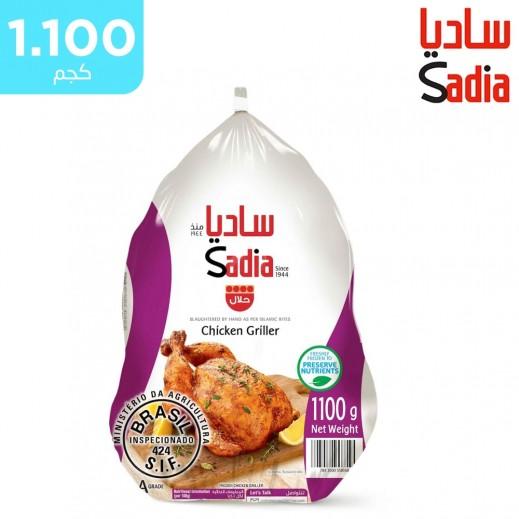 ساديا دجاج كاملة مجمدة 1.1 كجم