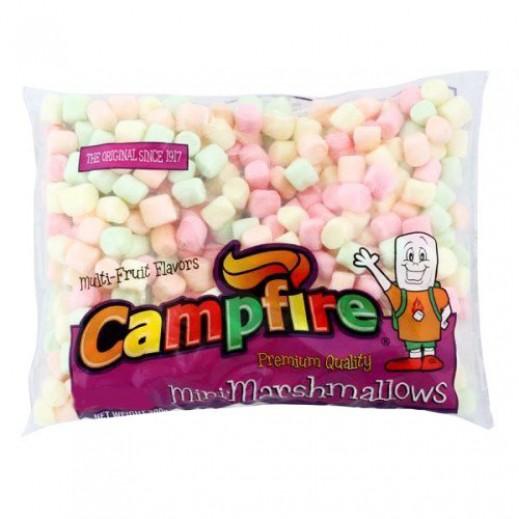 كامبفير – حلوى مارشمالو الخطمى صغيرة الحجم – ملونة بنكهات الفاكهة 300 جم