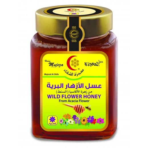 معجزة الشفاء – عسل الأزهار البرية 500 جم