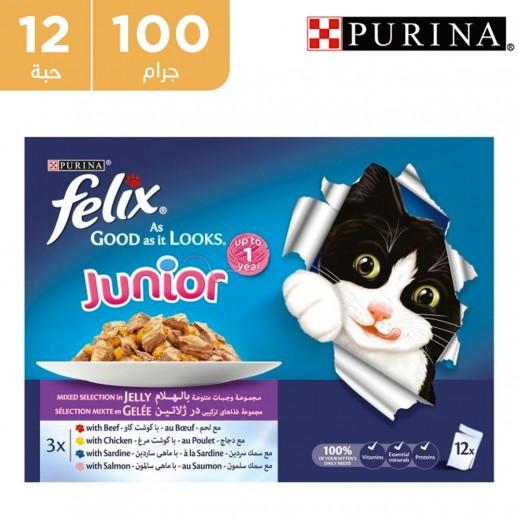 بورينا فليكس - طعام القطط وجبة دجاج مع سمك منتقاه في جيلي 12 × 100 جرام