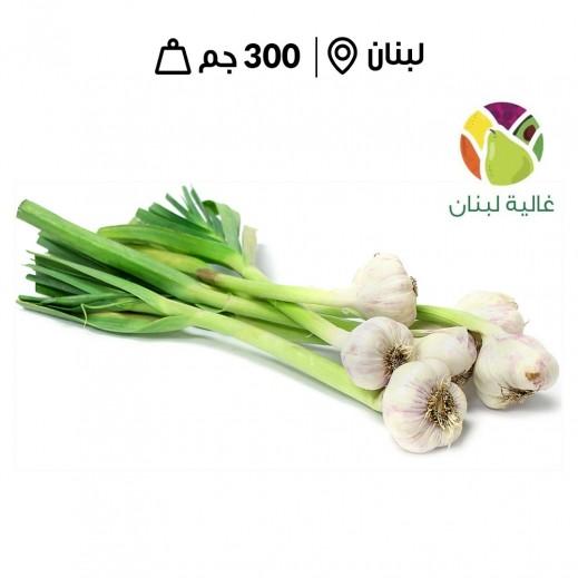 ثوم أخضرغالية لبنان لبناني طازج (300 جم تقريبا)