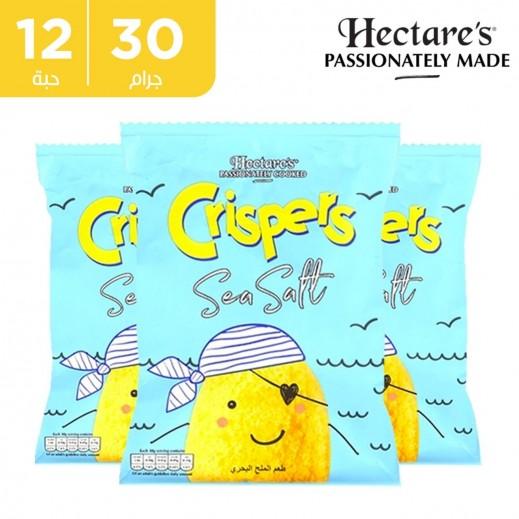 اشتر هيكترز رقائق بطاطس كريسبر خالية من الغلوتين بطعم ملح البحر 12 × 30 جم + 1 كرتون نكهة مجانا