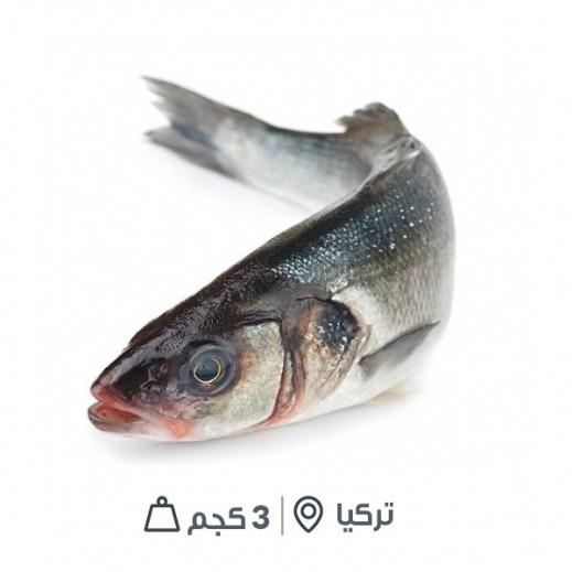 سمك سيباس تركي طازج (كامل بالأمعاء) -  3 كجم تقريباً  - يتم التوصيل بواسطة سمك إكسبرس خلال 24 ساعة