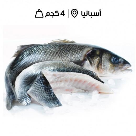 سمك باس البحر اسباني طازج (مٌنظف بدون أمعاء) -  4 كجم تقريباً  - يتم التوصيل بواسطة سمك إكسبرس خلال 24 ساعة