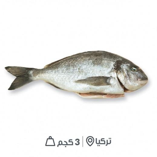 سمك سيبريم تركي طازج - مُنظف بدون أمعاء (3 كجم تقريباً)  - يتم التوصيل بواسطة سمك إكسبرس خلال 24 ساعة