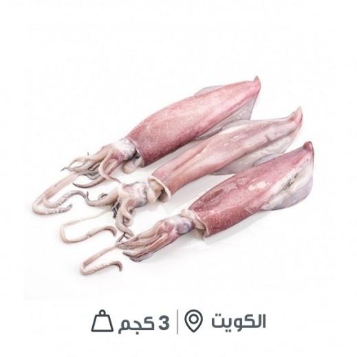 سمك حبار كويتي مجمد مُنظف (3 كجم تقريباً)  - يتم التوصيل بواسطة سمك إكسبرس خلال 24 ساعة