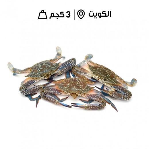 سلاطعين كويتيّة طازجة (3 كجم تقريباً)  - يتم التوصيل بواسطة سمك إكسبرس خلال 24 ساعة