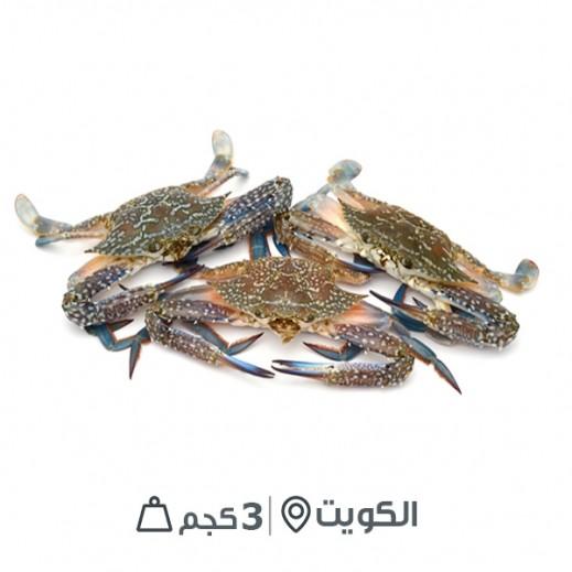قبقب طازج كويتي غير مُنظف (3 كجم تقريباً)  - يتم التوصيل بواسطة سمك إكسبرس خلال 24 ساعة