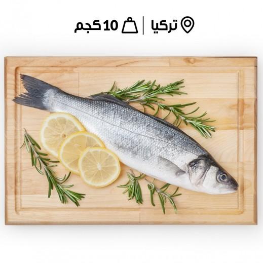 سمك سي باس تركي طازج حجم 800/600 (10 كجم تقريبًا) - يتم التوصيل بواسطة سمك إكسبرس خلال 24 ساعة