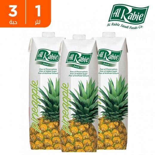الربيع - عصير الأناناس نكتار 1 لتر (3 حبة)