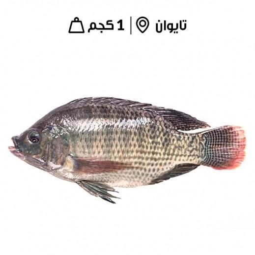 دانة - سمك بلطي مجمد 200/300 - 1 كجم